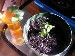 Tangelo Minneola - Two seedlings in a pot 4 May 2015